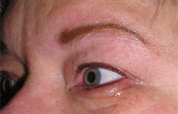 Permanent eyebrow cosmetic after photo.